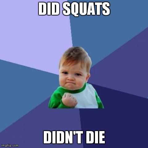 squat meme squat it like it's hot how to program squats into your training